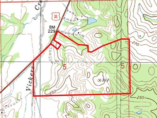 183 Acres Rolling Hills Pasture : Pintlala : Montgomery County : Alabama