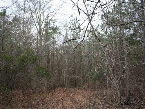 49 Acres Lowndes Co, Ft, Deposit : Fort Deposit : Lowndes County : Alabama