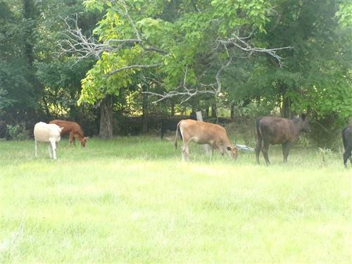 3 Mile Road Cattle Ranch Pushmatah : Antlers : Pushmataha County : Oklahoma