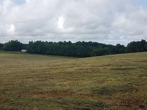 McLeod Tract 16+/- Acre Mini Farm : Ashland : Clay County : Alabama