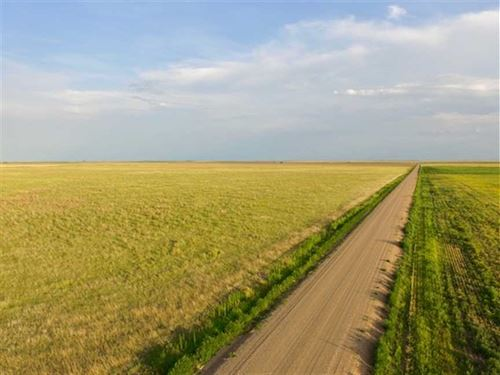 153 Acres of Crp And Good Hunti : Richfield : Morton County : Kansas