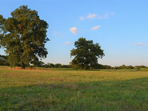 Gently Rolling 66+ Acres, With Pond : Cumby : Hopkins County : Texas