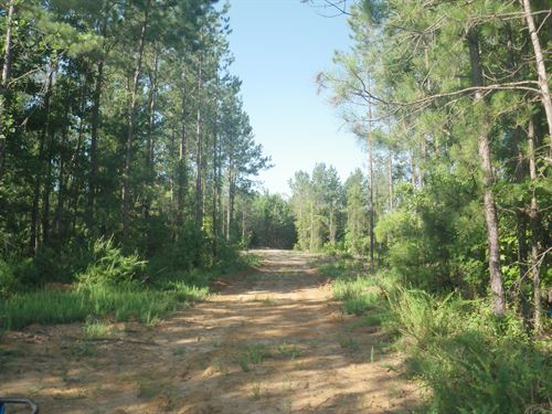 Farmersville Tract : Minter : Lowndes County : Alabama