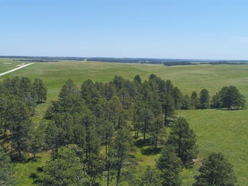 Pine Ridge Range And Timber Parcel : Crawford : Dawes County : Nebraska