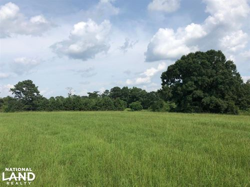 Georgiana Homesite & Pasture Land : Georgiana : Butler County : Alabama