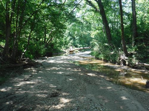 458 Acre Timber & Recreation Tract : Utica : Hinds County : Mississippi