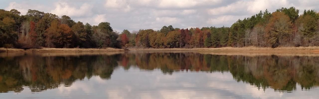 Turnkey Hunting With Lake & Lodge : Shellman : Randolph County : Georgia