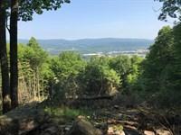 375 +/- Acres Of Land : McElhattan : Clinton County : Pennsylvania