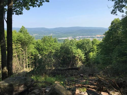 375 +/- Acres Of Land : McElhattan : Clinton County : Pennsylvania