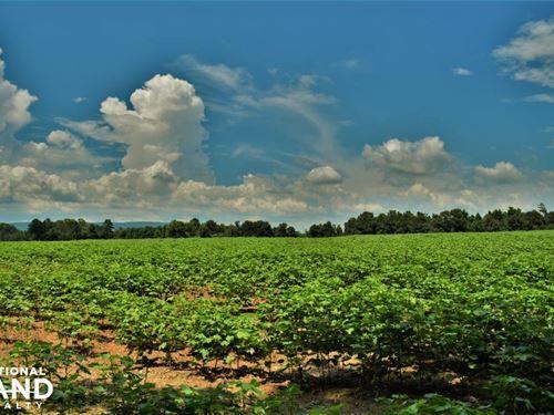 Ballplay Creek Farm Recreation And : Ballplay : Etowah County : Alabama
