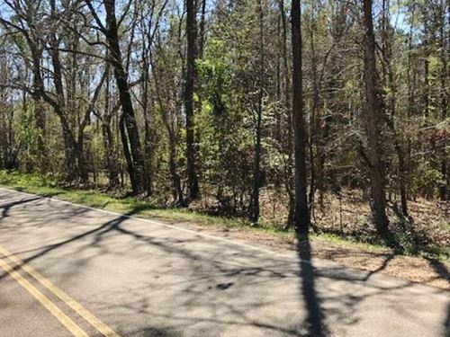 54 Acre Timberland Tract For Sale : Hazlehurst : Copiah County : Mississippi