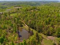 Land Auction In Kentucky : South Shore : Greenup County : Kentucky