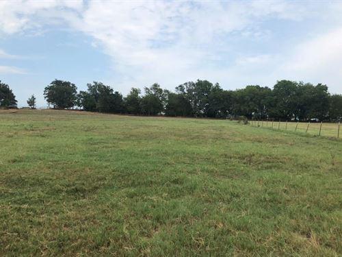 26 Acres In Como With Pond : Como : Wood County : Texas