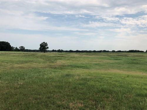 67 Acres With Pond In Como : Como : Wood County : Texas