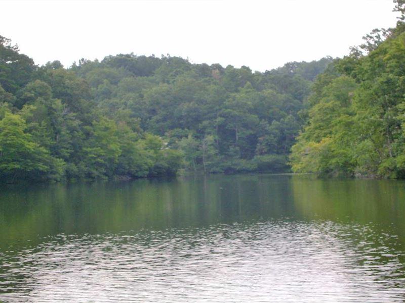 Lake Mary Tract : Munford : Talladega County : Alabama