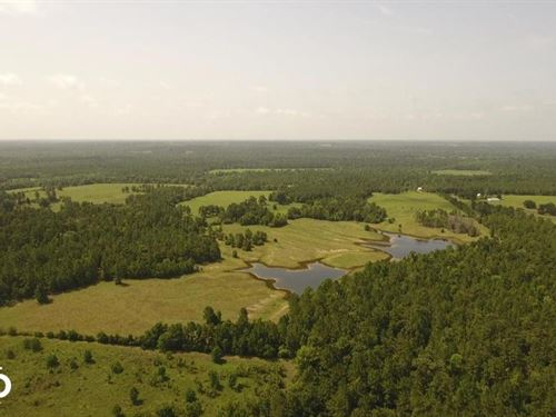 125 Acre Spacious Ranch/Recreationa : Leggett : Polk County : Texas