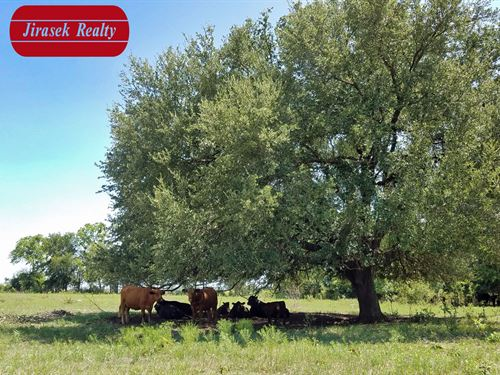 30 Ac, Fm 2268, Holland Isd : Holland : Bell County : Texas