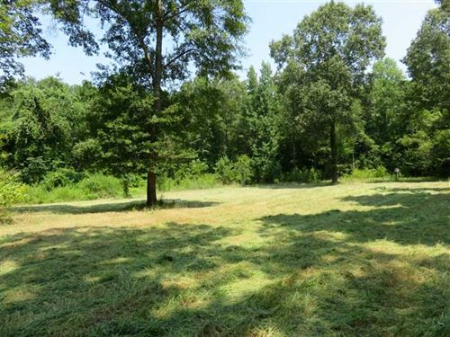 130 Acres of Fine Hunting Land : Woodville : Wilkinson County : Mississippi