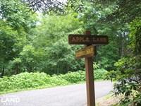 Apple Mountain Estate Lot North : Spruce Pine : Mitchell County : North Carolina
