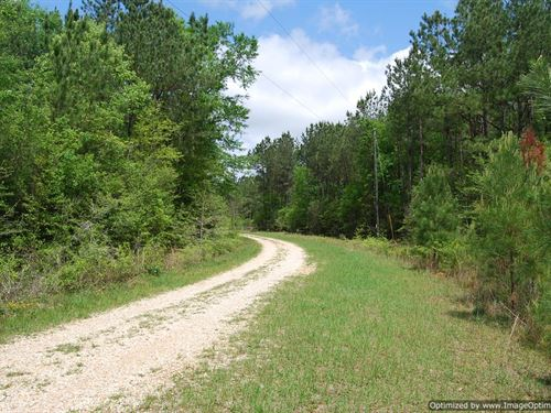 Outstanding Property : Poplarville : Pearl River County : Mississippi