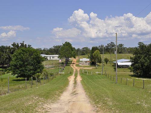Babson Park Former Citrus Nursery : Babson Park : Polk County : Florida