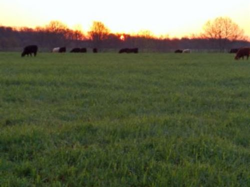 77.20Ac, Waterfalls, 20 Ac Pasture : Lafayette : Macon County : Tennessee