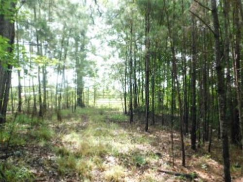 35 Acres In Copiah County, Ms : Wesson : Copiah County : Mississippi