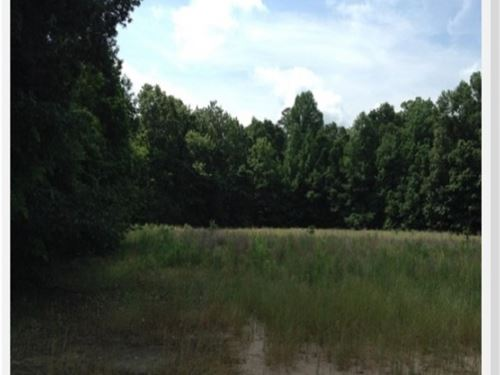 28 Acres In Holmes County : Lexington : Holmes County : Mississippi