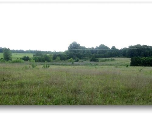 150 Acres In Oktibbeha County : Starkville : Oktibbeha County : Mississippi