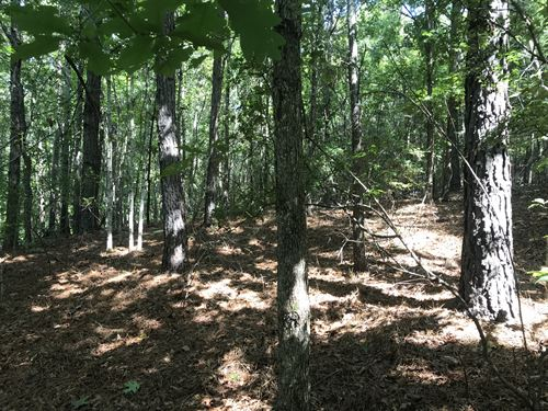 36 +/- Acres In Fayette County, Al : Fayette : Alabama
