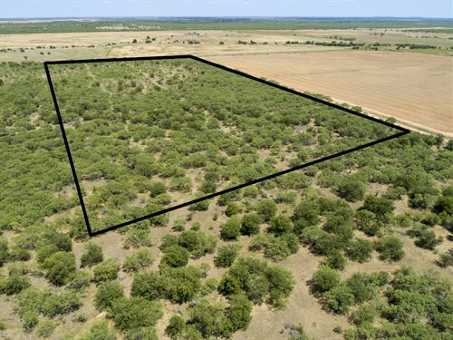 25 Acres In Young County : Olney : Young County : Texas