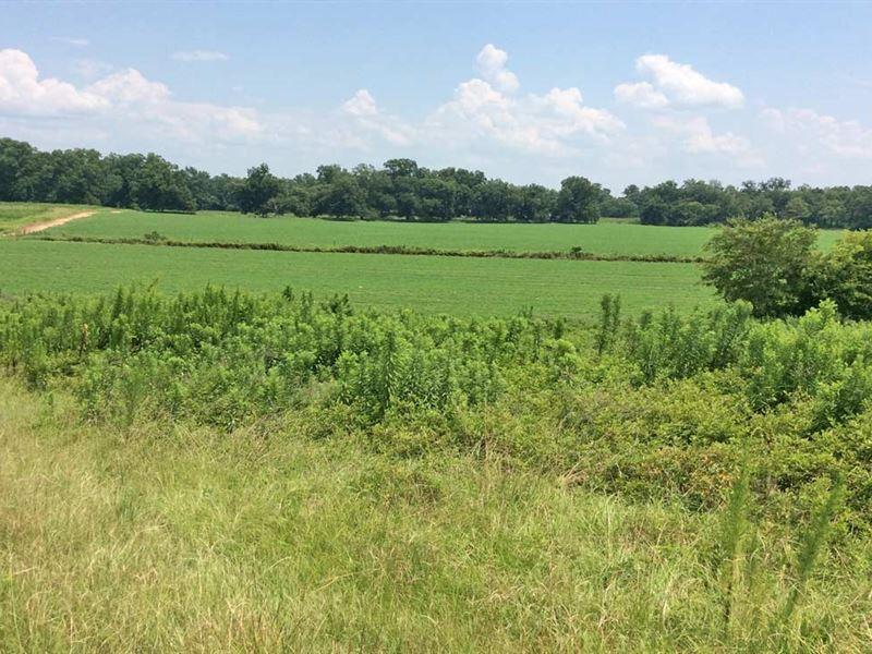 Dicks Road Tract : Luverne : Crenshaw County : Alabama