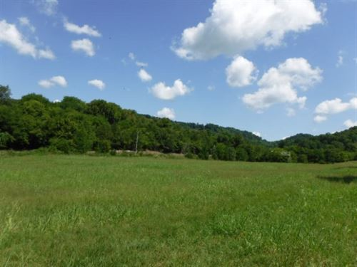 32.65 Ac, Stream, Mtn View, Pasture : Carthage : Smith County : Tennessee