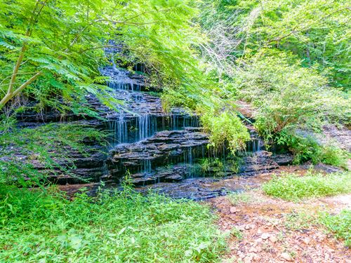 Waterall, Creek And 66 Acres : Hohenwald : Lewis County : Tennessee