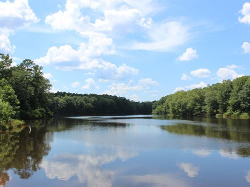 5 Lakes Totaling 33+ Acres : Buena Vista : Marion County : Georgia