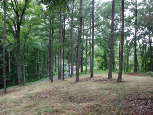 77 Ac, Creek, Hunters Paradise, Eas : Whitleyville : Jackson County : Tennessee