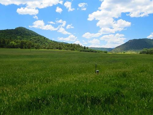 Brunelli Ranch : Gulnare : Las Animas County : Colorado