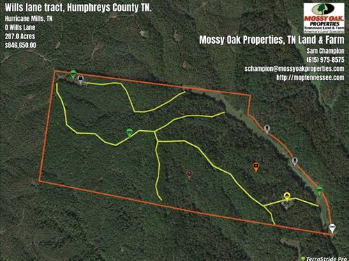 305 Acre Hunting/Timber Tract, Hur : Hurricane Mills : Humphreys County : Tennessee