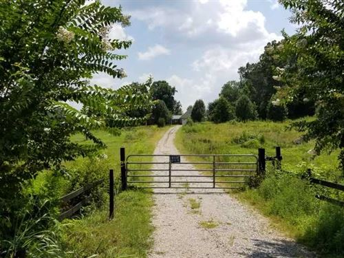 80 Acre Cattle Farm With Barns, Po : Stantonville : McNairy County : Tennessee