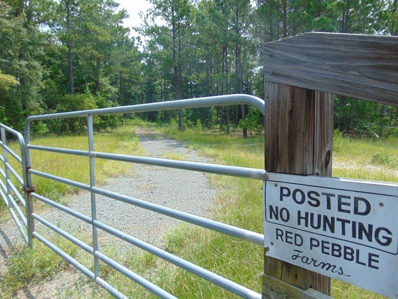 Big Timber, Big Creek, Improvements : Ranch for Sale : Rupert : Taylor  County : Georgia