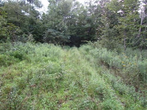 60 +/- Acres, Hunting, Farm Land : Unityville : Lycoming County : Pennsylvania