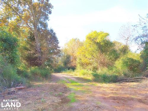 62.99 Acres, Hwy 51, Carnesville : Carnesville : Franklin County : Georgia