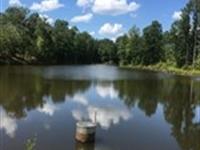 Lane Road Hunting Tract : Monticello : Jasper County : Georgia