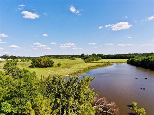 160 Acre Cattle And Recreation Land : Minden : Webster Parish : Louisiana