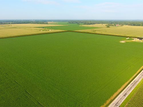 Land Auction, 4810 Acres, 85 Tracts : Ewing : Franklin County : Illinois