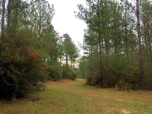 1.4 Miles Perdido River/State Line : Bay Minette : Baldwin County : Alabama