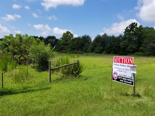 46 Wooded Acres In Comer : Comer : Madison County : Georgia