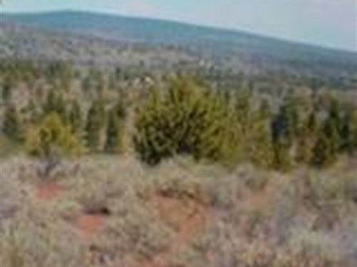 Recreation Property : Bonanza : Klamath County : Oregon