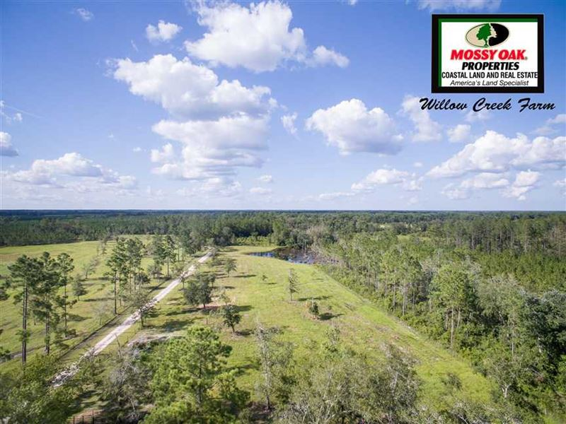 Commercial Property For Sale In Folkston Ga