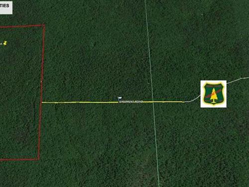 160 Acres For Sale in Fairdealing : Fairdealing : Ripley County : Missouri